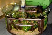 Стол аквариум 9