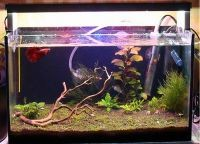 Светодиодная лента для аквариума1