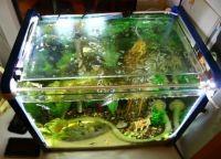 Светодиодная лента для аквариума3