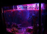 Светодиодная лента для аквариума4