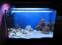 Светодиодная лента для аквариума5