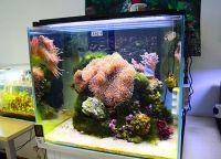 Светодиодная лента для аквариума8