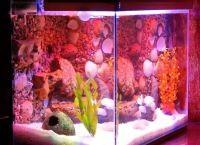 Светодиодная лента для аквариума9