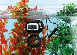 термометр для аквариума2