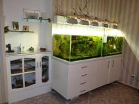 Тумба под аквариум8