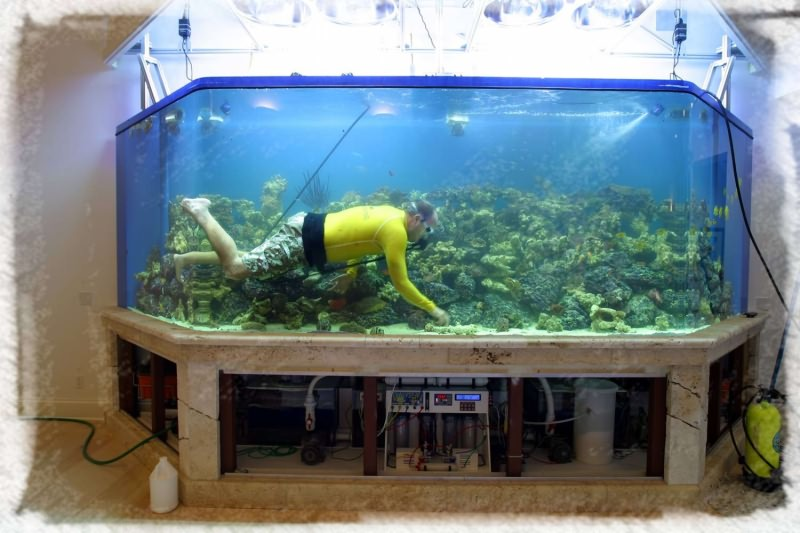 уборка огромного аквариума