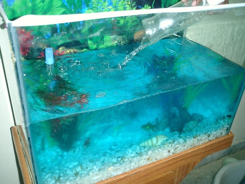 Аквариумная вода для неприхотливых рыб.