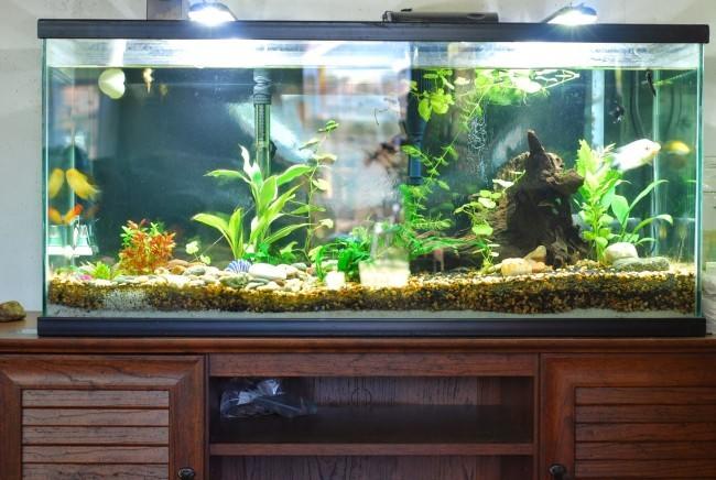 Установка аквариума.