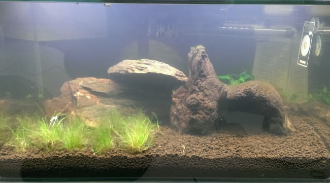 Очищение аквариумной воды.