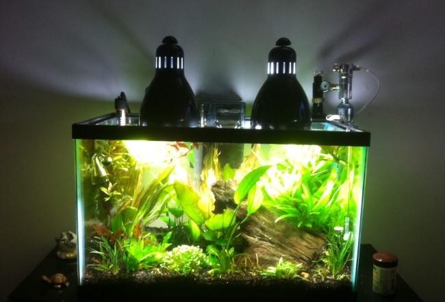 Лампа для аквариумных растений