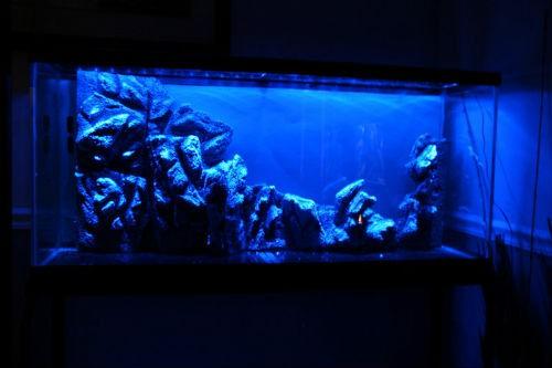 сделать задний фон для аквариума из пенопласта