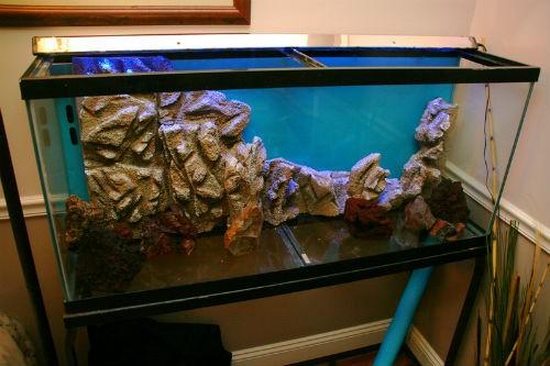 Задняя стенка аквариума своими руками фото 89