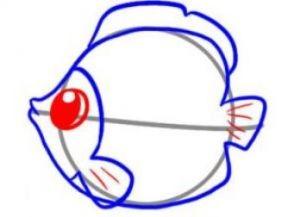 как нарисовать красивую рыбку 4